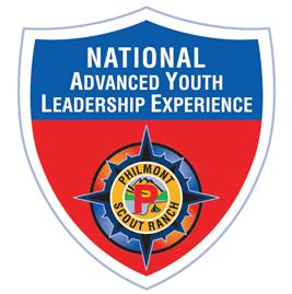 NAYLE Logo